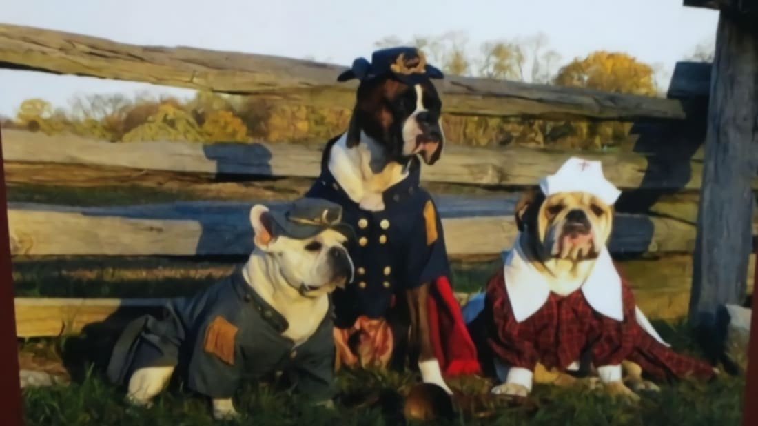 Dogs of Gettysburg Facebook