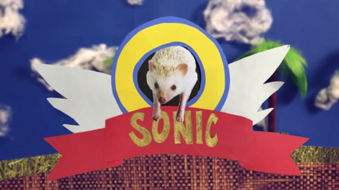Morning Cup Of Links Real Life Sonic The Hedgehog Mental Floss