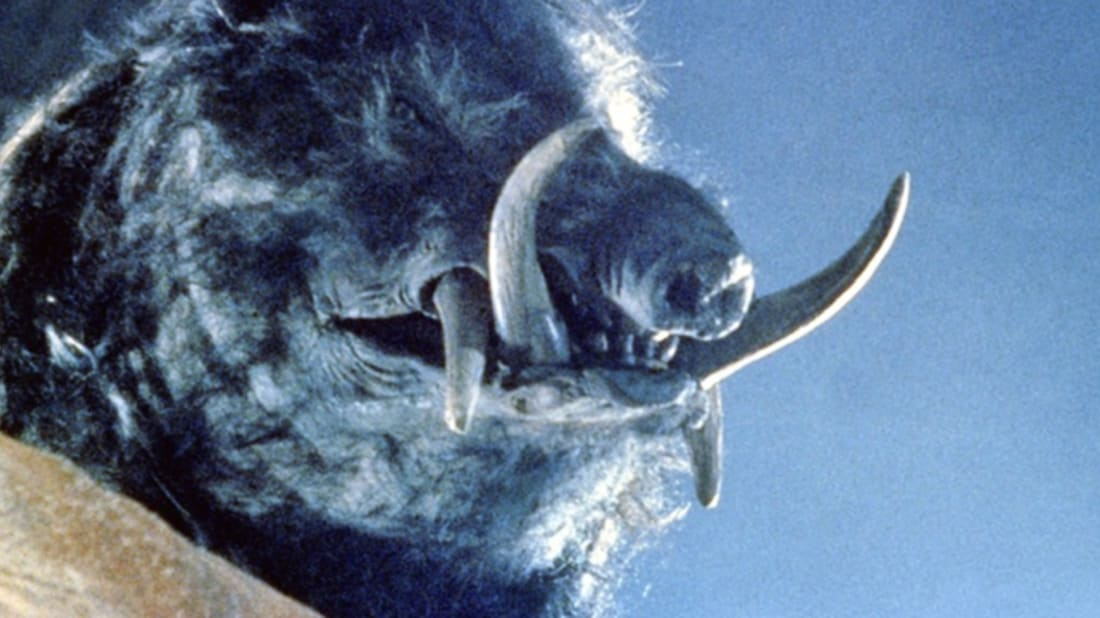 10 Animal Attack Movies That Are Actually Scary | Mental Floss