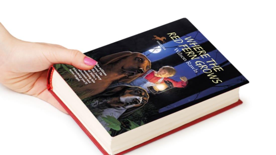istock (blank book)