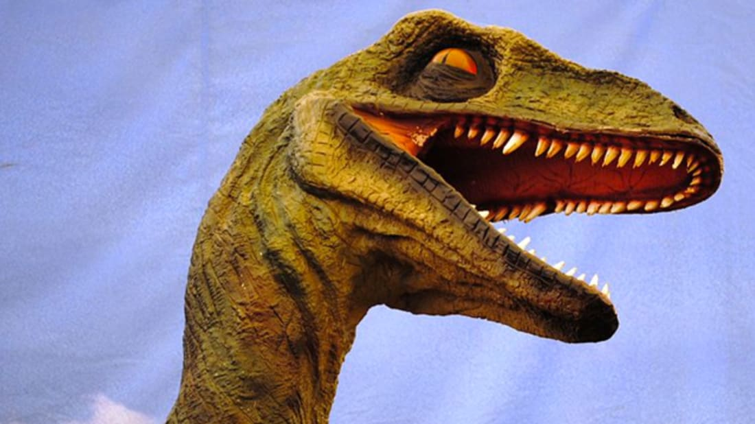 10 Fearsome Facts About Utahraptor | Mental Floss