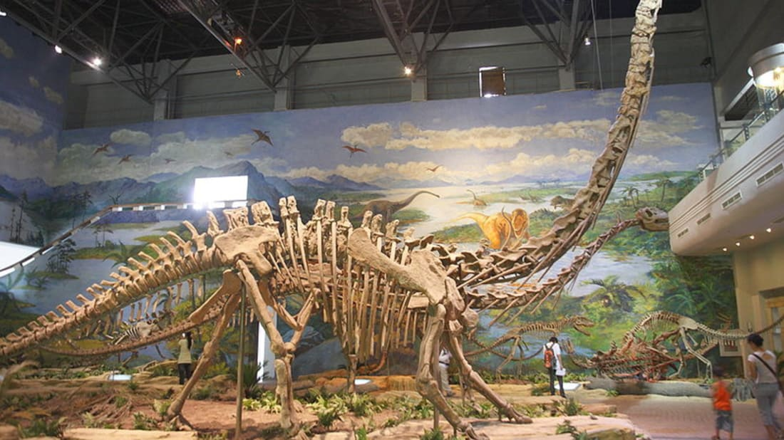 10 Long-Necked Facts About Mamenchisaurus | Mental Floss