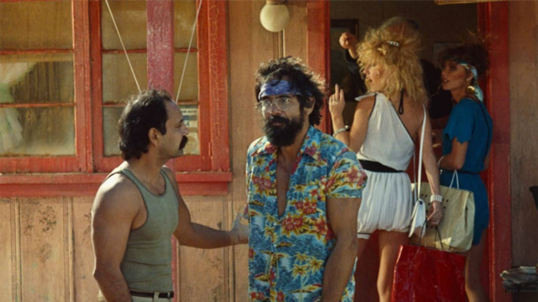 15 Things You Probably Didn't Know About 'Cheech & Chong: Things Are