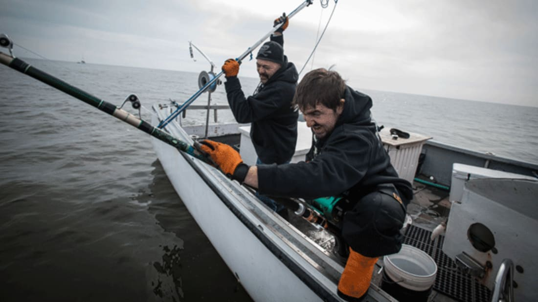 10 Things We Learned From Wicked Tuna | Mental Floss