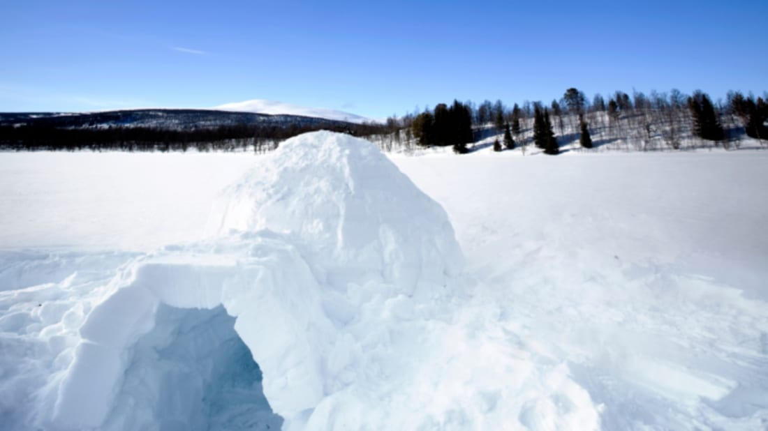 15 Delightful Snow Projects | Mental Floss