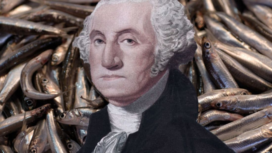 Thinkstock (fish)/Getty Images (George Washington)