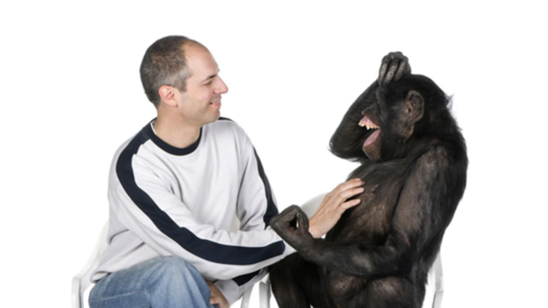 Do Other Animals Laugh When Tickled? | Mental Floss