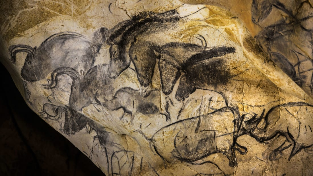 A view taken on June 13, 2014 shows paintings of animal figures on the rock walls of the Chauvet Cave in Vallon Pont d'Arc.
