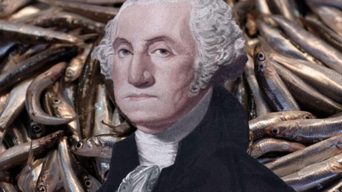 Thinkstock (fish)/Getty Images (George Washington)