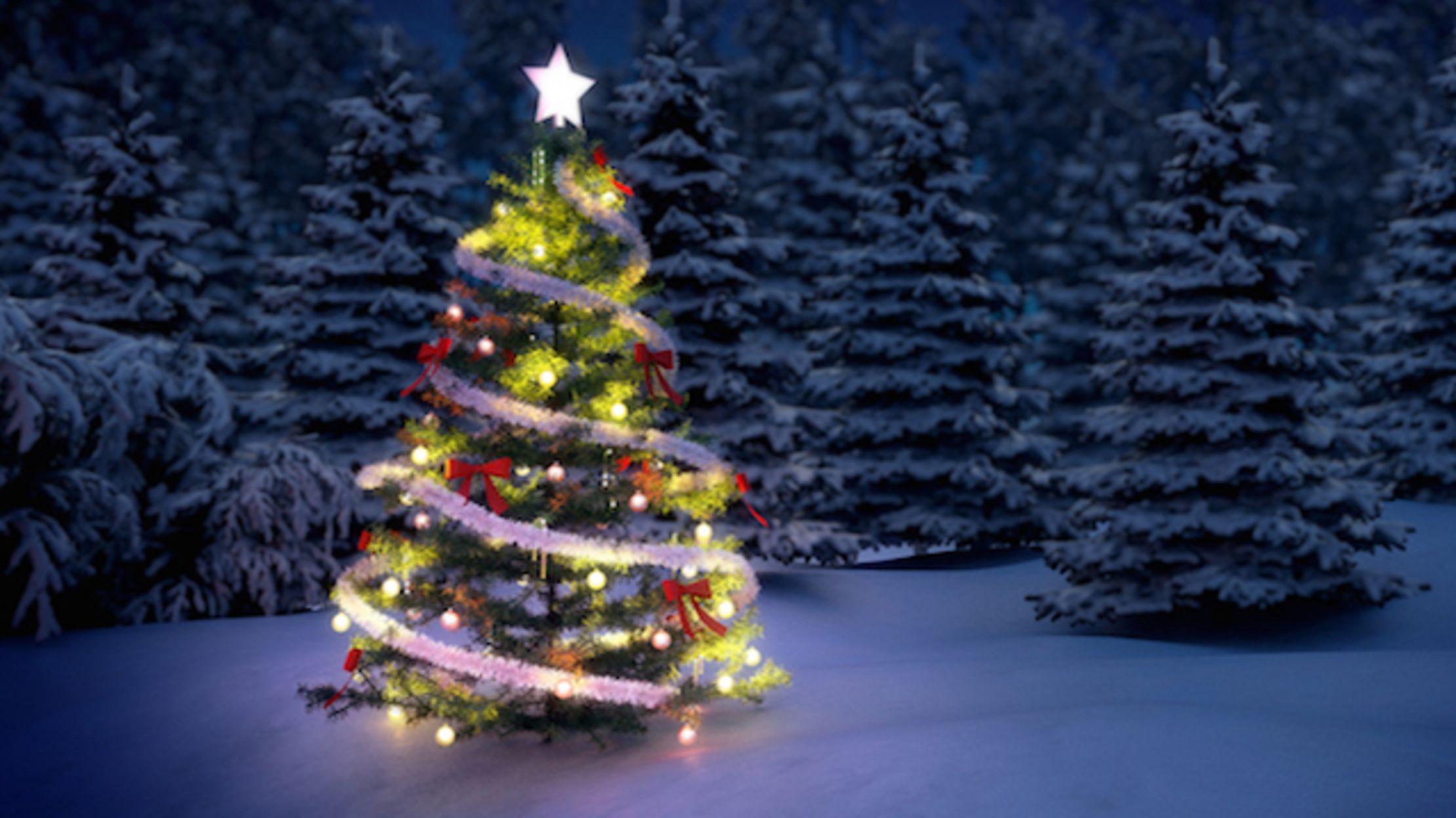 Origin of the Christmas Tree