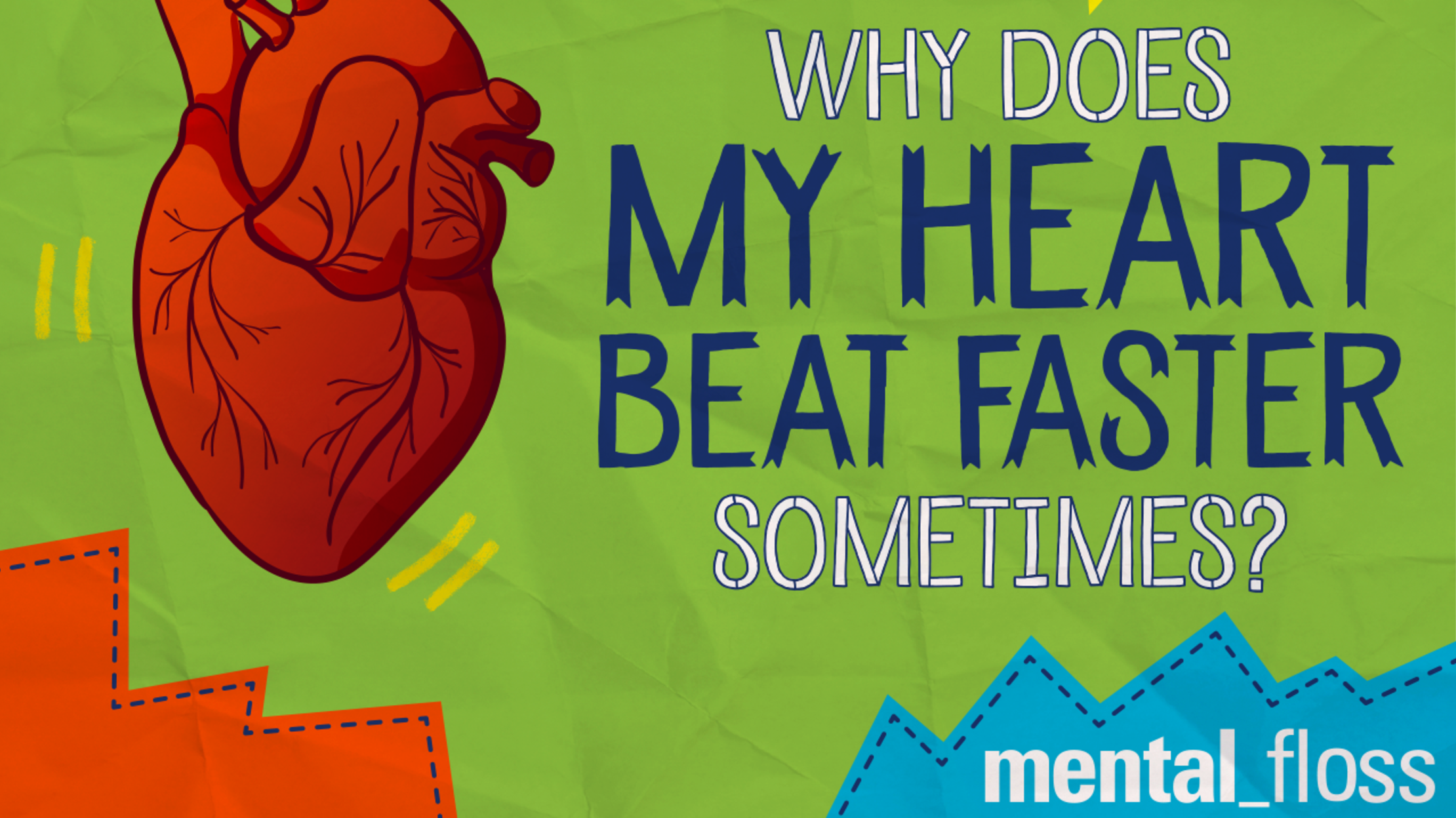 09a3dda19adca Why Does My Heart Beat Faster Sometimes? | Mental Floss