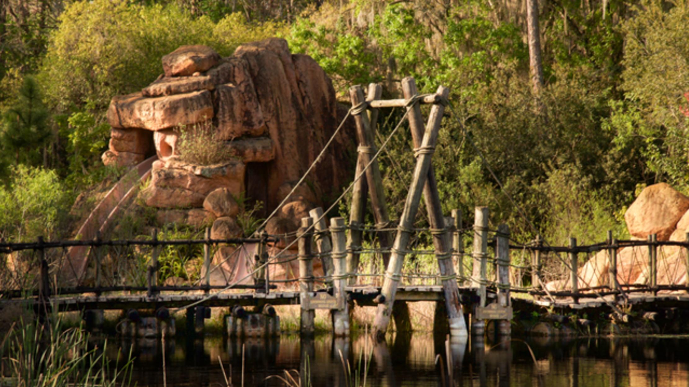 20 Haunting Photos Of Disney S Abandoned Water Park Mental Floss