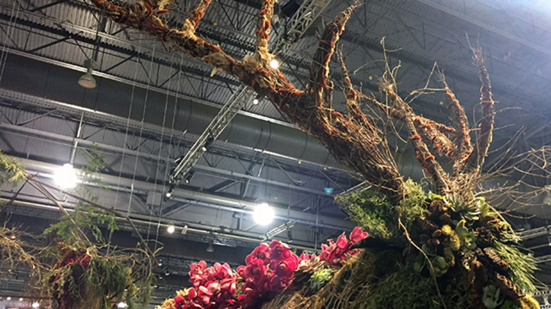 8 Amazing Displays From The 2016 Philadelphia Flower Show Mental Floss