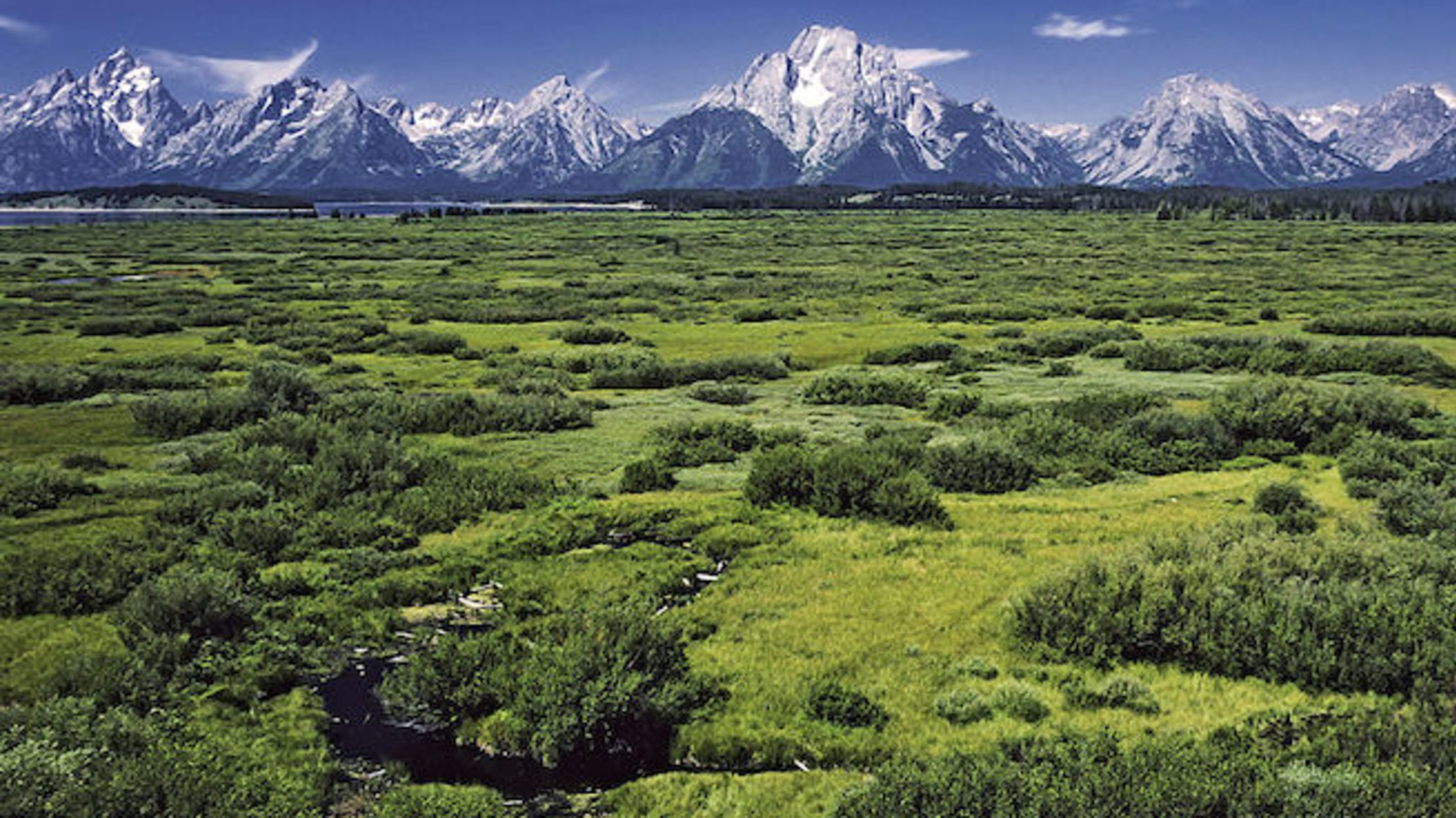 10 Elevated Facts About Grand Teton National Park
