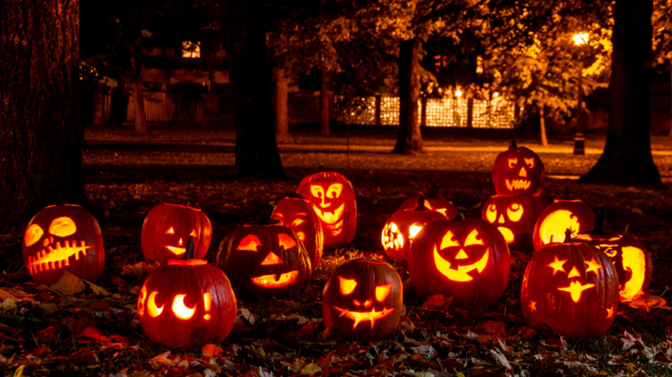 Your Biggest Questions About Halloween, Answered