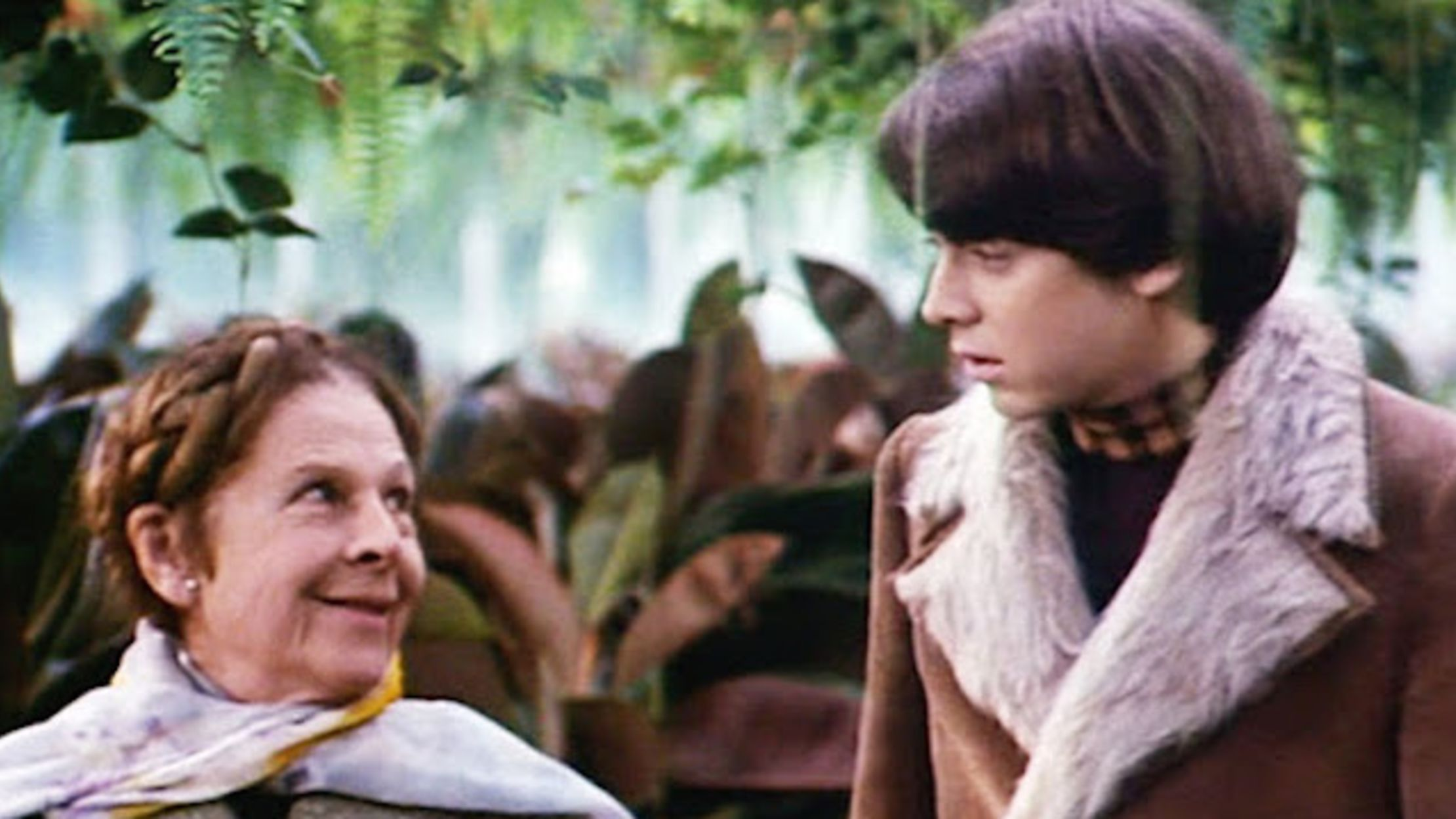 10 Perfectly Paired Facts About 'Harold and Maude' | Mental Floss