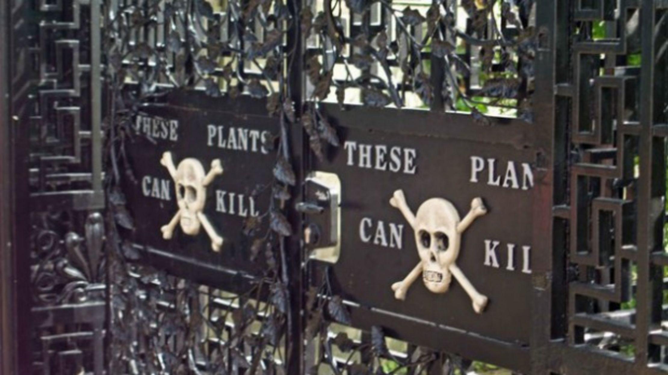 The Poison Garden Of Alnwick Castle Mental Floss