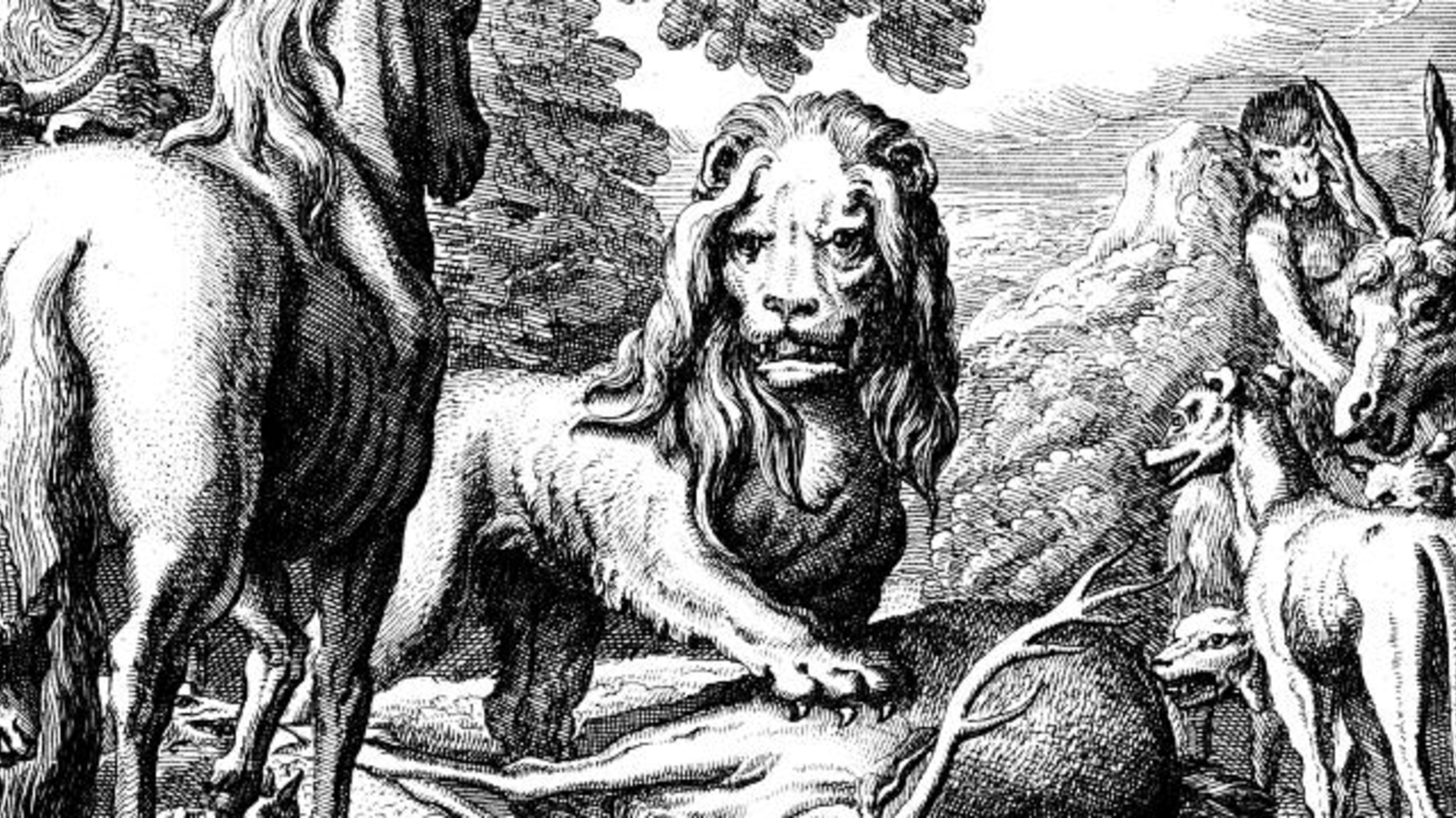 19 Everyday Expressions That Came from Aesop | Mental Floss