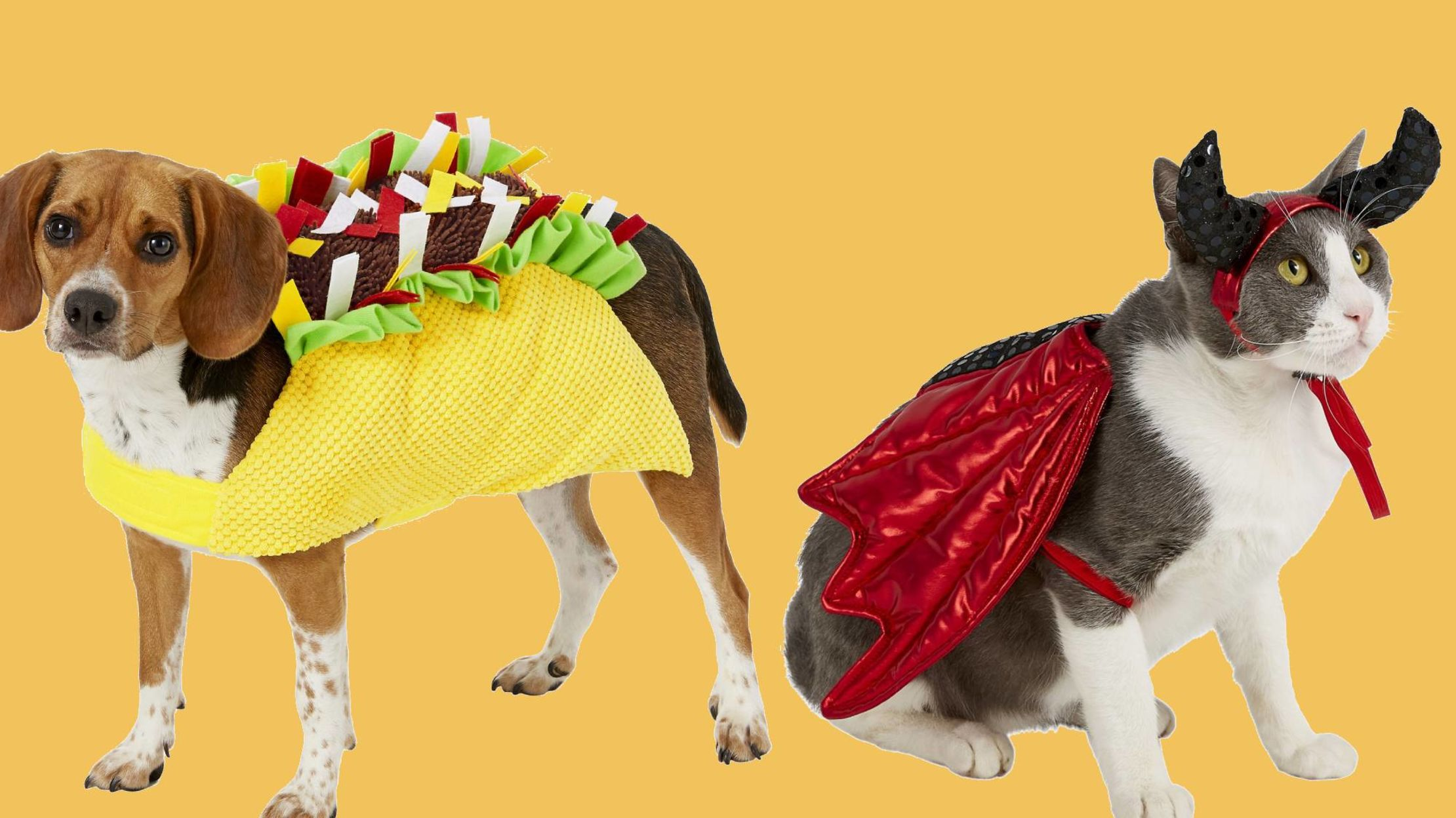 25 Awesome Pet Halloween Costumes You Can Buy Right Now