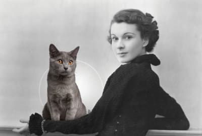 Getty Images (Vivien Leigh) / iStock (cat)