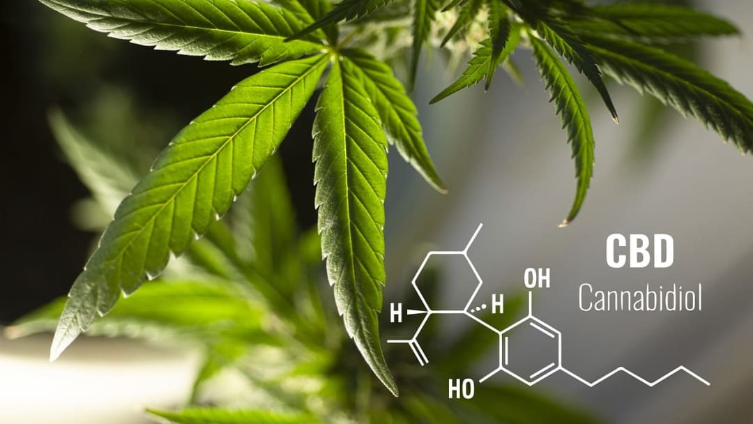 How much do you know about CBD fact versus fiction?