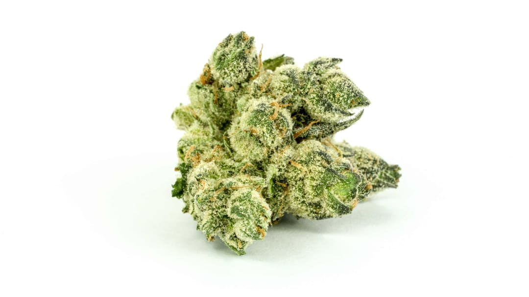 Most OGs hit with a strong cerebral high that slowly relaxes the body.