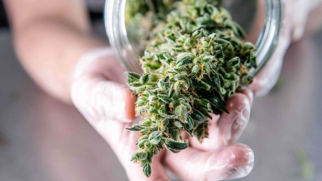 Drying and curing your cannabis? You really don't want to mess up this part.