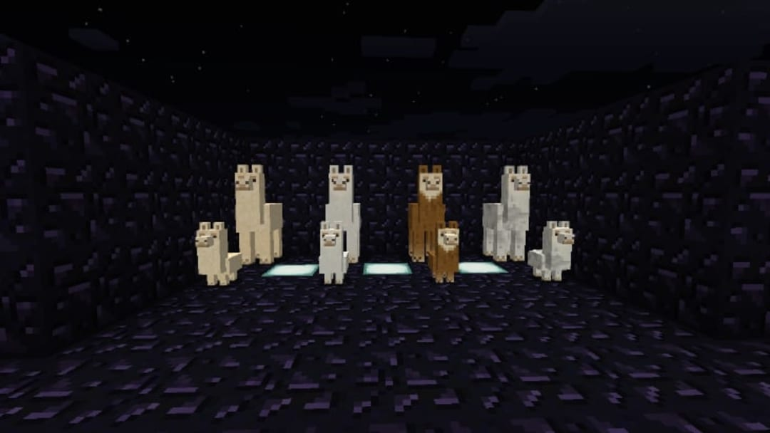 What do Llamas Eat in Minecraft: Explained