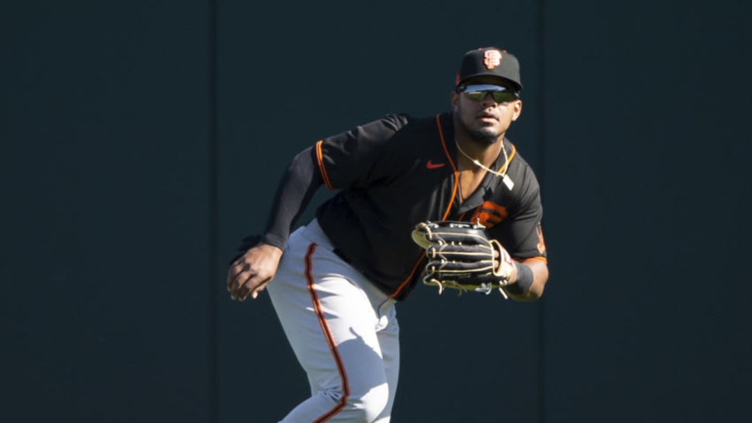 SF Giants prospect Heliot Ramos. (Photo by Ron Vesely/Getty Images)