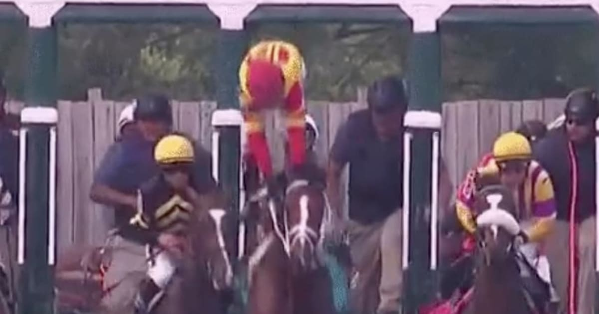 VIDEO Jockeyless Horse Bodexpress Steals The Show At The