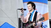 Harry Styles se hizo famoso por el grupo One Direction