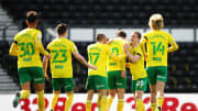 Norwich's promotion has been officially confirmed