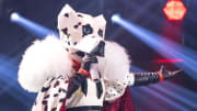 """The Masked Singer"" First Live-Show In Cologne"