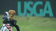 Check out the worst scores in US Open history including the records for the highest round and highest 72-hole winning score.