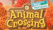 Animal Crossing Fall Bugs