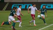 Palmeiras e Fluminense se encontram no Campeonato Brasileiro.