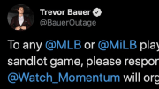 Cincinnati Reds pitcher Trevor Bauer is organizing a Sandlot game for MLB players
