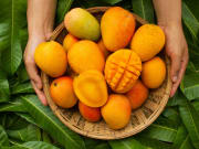 Do mangoes really boost the cannabis high?
