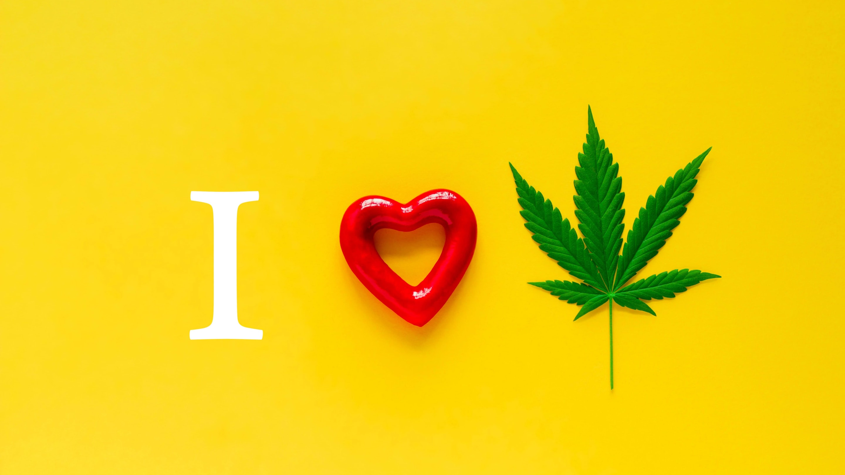 15 Best Places to Live if You Love Cannabis
