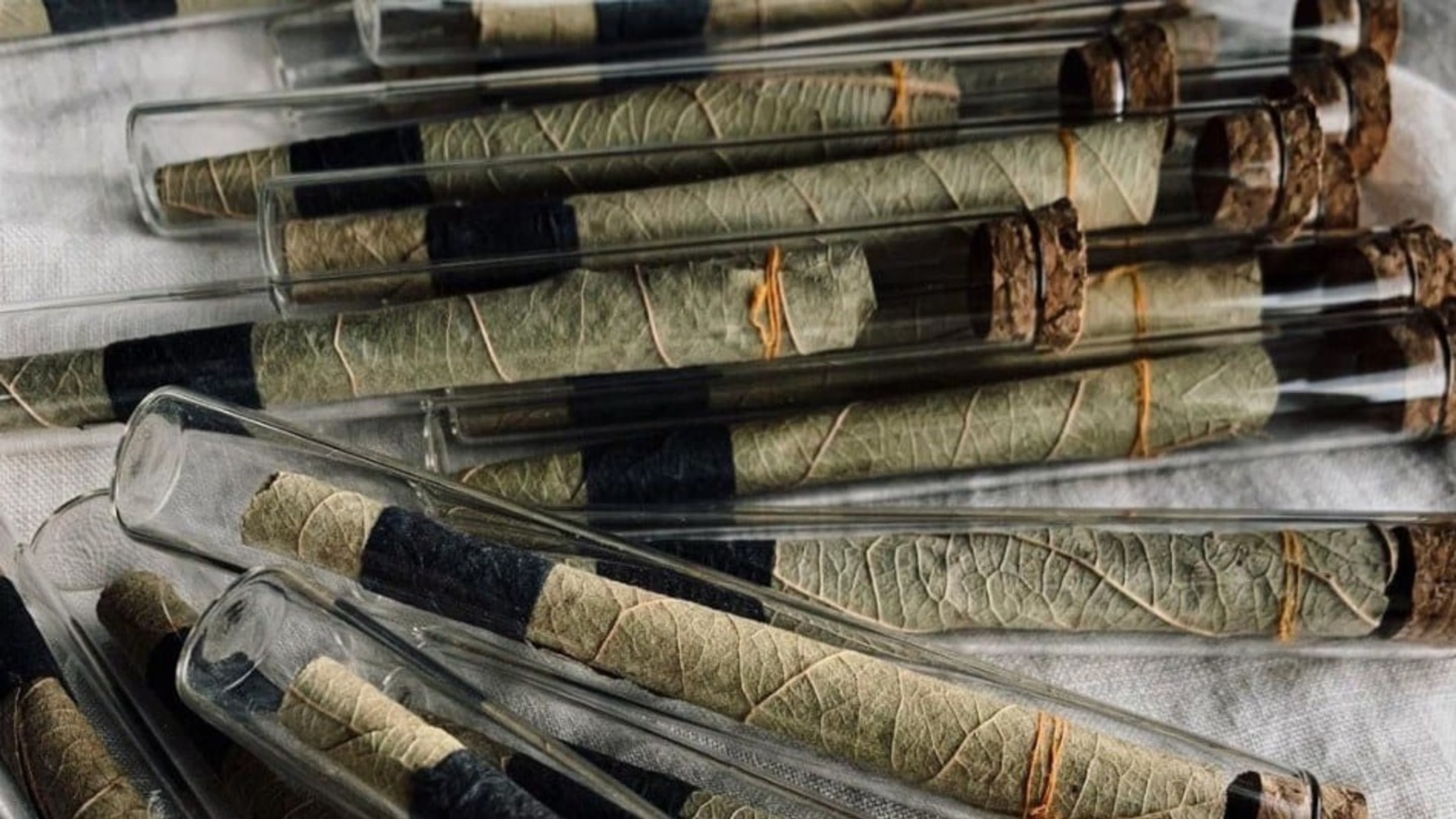 Smoking Weed With Traditional Pre-Rolled Leaves From India? It's A Marvelous Thing.