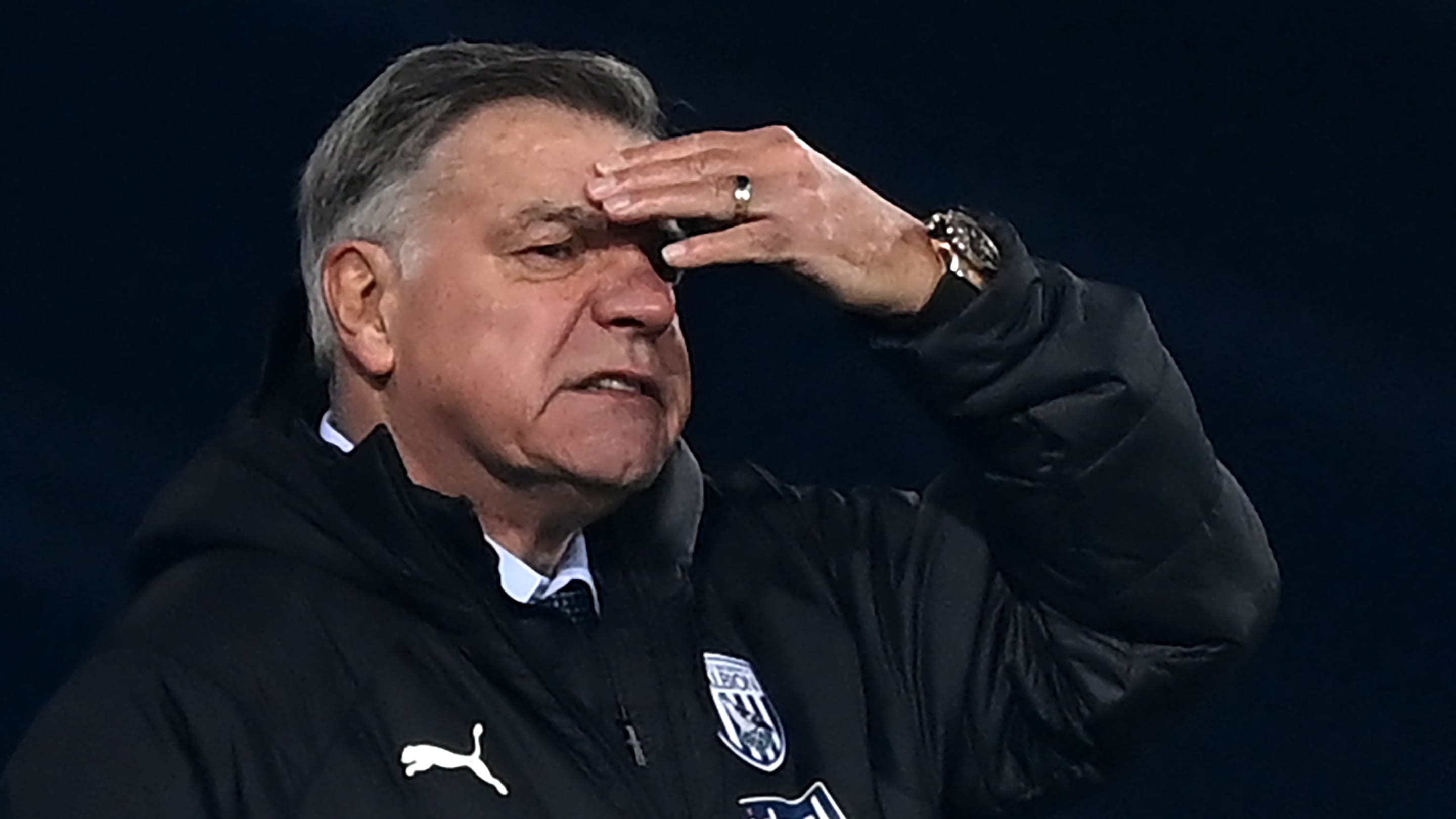 Sam Allardyce bemoans Brexit impact on West Brom transfers - despite being pro-Brexit