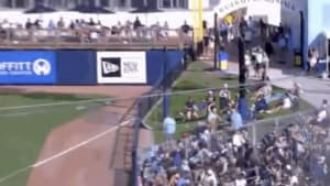 Tampa Bay Rays fan makes super catch at Spring Training