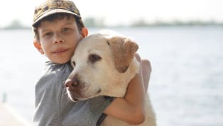 6 Most Family-Friendly Dog Breeds