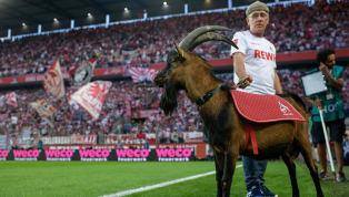 Am heutigen Sonntagnachmittag findet erstmalig nach sechs Jahren das Rheinderby zwischen Fortuna Düsseldorf und dem 1. FC Köln statt. Natürlich wird es...