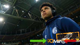 Schalke 04 hat wenige Talente seiner Sorte im Kader: Weston McKennie. Der 20-Jährige hat eine vorbildliche Arbeitseinstellung und glänzt als Zweikämpfer....