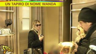 La chiacchierata trattativa tra Wanda Nara e l'Interper il rinnovo di contratto di Mauro Icardi ha attirato l'attenzione di Striscia La Notizia, che nelle...