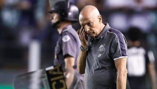 Entusiasta do trabalho de base do Santos, o treinador Jesualdo Ferreira vem dando espaço para os garotos e 'pinçando' reforços caseiros ao seu elenco...