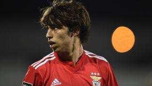 La joven perla del Benfica se ha convertido en uno de los jugadores más deseados por los grandes clubes de Europa y el conjunto rojiblanco es uno de los que...