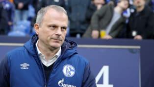 Der FC Schalke verstärkt sich wohl doch frühzeitig im administrativen Bereich. Wie die Leipziger Volkszeitung und Sky übereinstimmend berichten, kommt René...