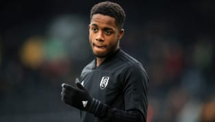 Former Fulham strikerBrian McBride believes that teenagerRyan Sessegnon needs to play a bigger role in the club's survivalpush this season, adding that...